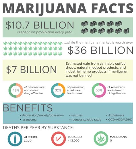 Marijuana Detox Facts by The Effects Of Legalized Marijuana On Crime And