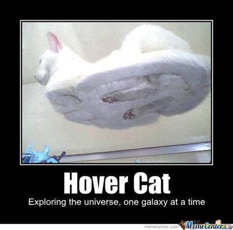 Cat Sitting At Table Meme - hover cat by nyancatten meme center