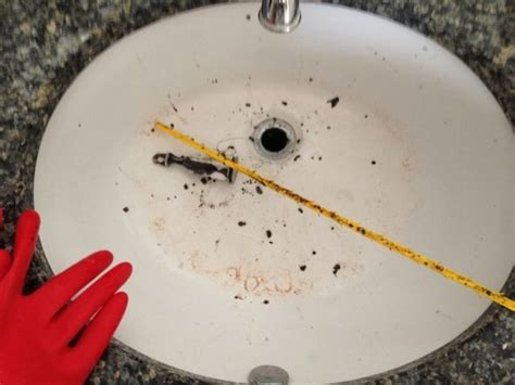 Clearing A Clogged Sink by How To Clear A Clogged Drain Without Chemicals Sawdust 174