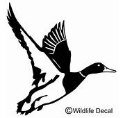 Duck In Flight Decal MD 1001 Wildlife Waterfowl Hunting