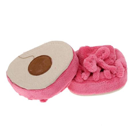 Murah Slimming Slipper 1 saf slimming leg slippers coral fleece half sole shoes indoor pink in slippers from
