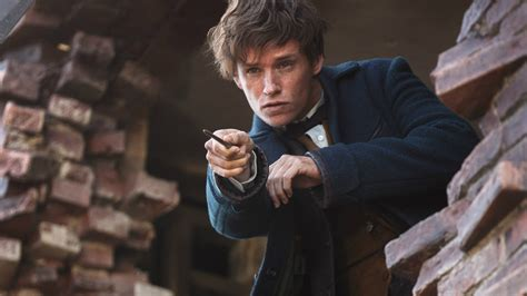 fantastic beasts and where fantastic beasts and where to find them proves it s a wizard s world us no majs just live here