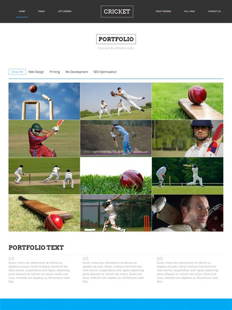 Cricket Site Template Cricket Website Templates Dreamtemplate Cricket Website Templates Free