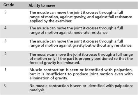 power grading bone and spine