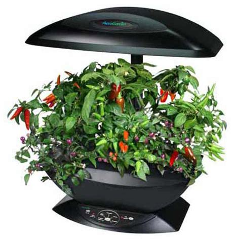 aerogarden indoor garden aerogarden automated indoor kitchen garden the green