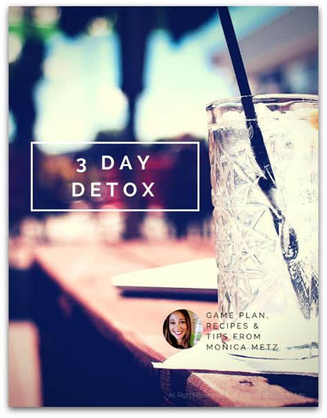 3 Day Detox Pdf by The 3 Day Detox Plan Spoelstra Metz