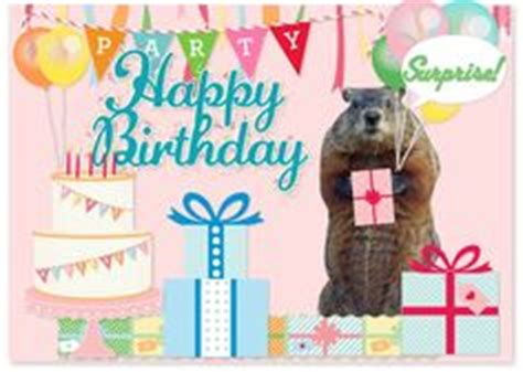 groundhog day birthday happy groundhog s day birthday card front quot why is