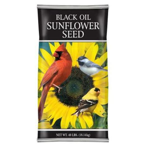 black sunflower seeds 40 lbs 40 lb black sunflower seed 62031 the home depot