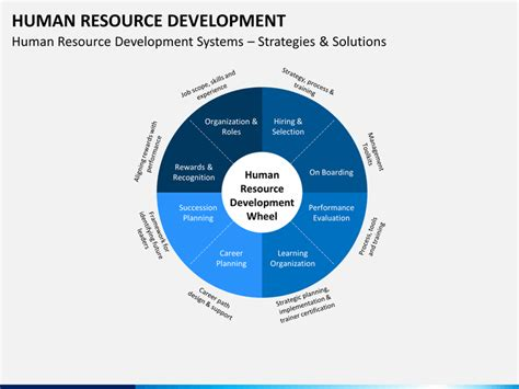 human resource development powerpoint template sketchbubble