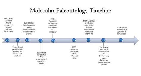 Molecular Paleontology Wikipedia