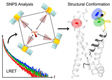 protein x is an unknown membrane protein new snps symmetric nano positioning system software made