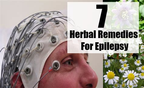 remedies for seizures 7 herbal remedies for epilepsy search home remedy