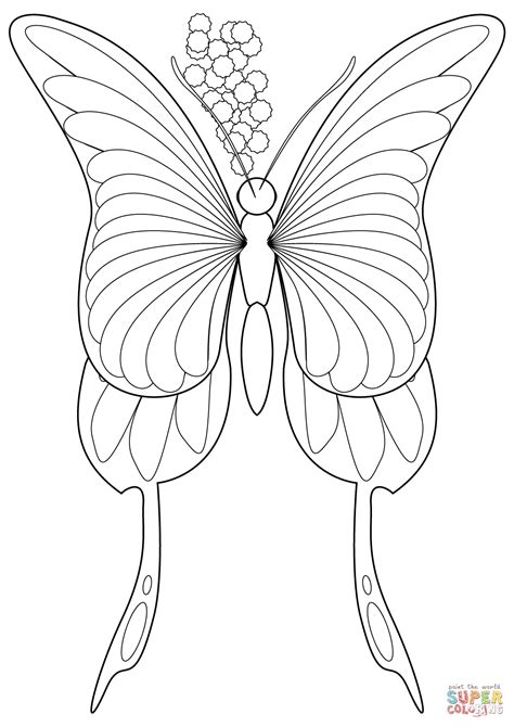 Galerry tiger swallowtail butterfly coloring page
