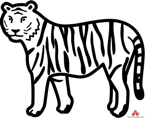 drawing clipart tiger clipart pencil and in color tiger clipart