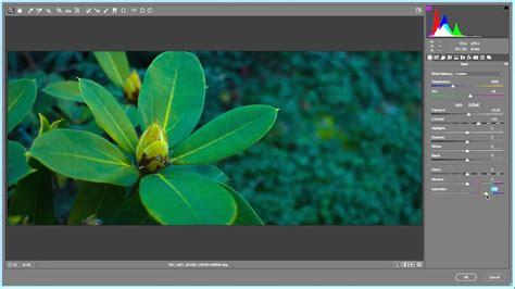 mlv workflow how to convert and edit magic lantern mlv