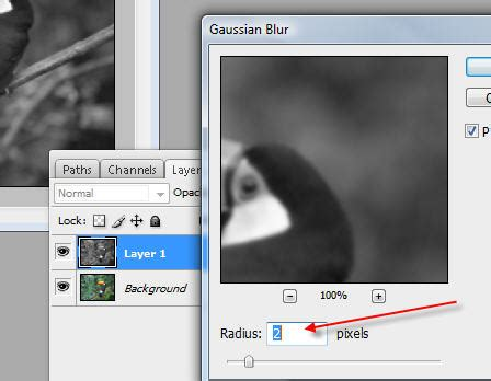 tutorial adobe photoshop mudah cara mudah mempertajam gambar tutorial adobe photoshop
