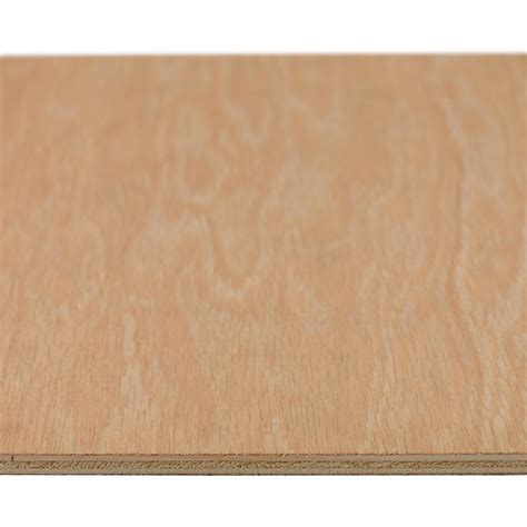 sanded plywood common 5 2 mm x 2 ft x 4 ft actual 0