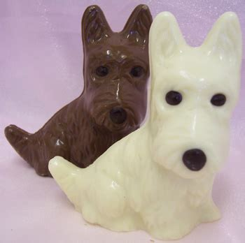 chocolate dogs why chocolate is bad for dogs petswelcome
