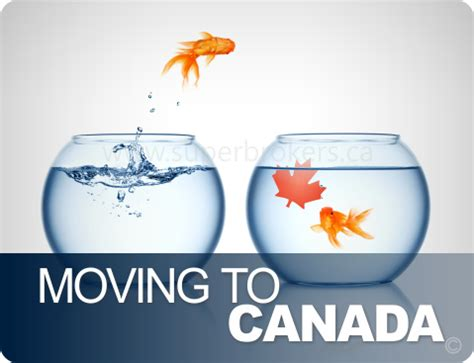 moving to canada mortgage advice for immigrants super brokers by tmg the mortgage group