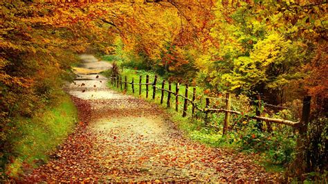 fall landscape autumn love wallpaper landscape backgrounds 1729
