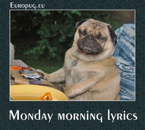 monday pug pug has monday morning lyrics