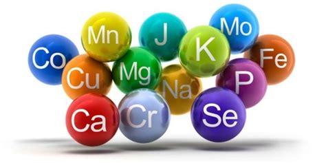 in quali alimenti si trovano i sali minerali sali minerali elenco benefici a cosa servono e dove si