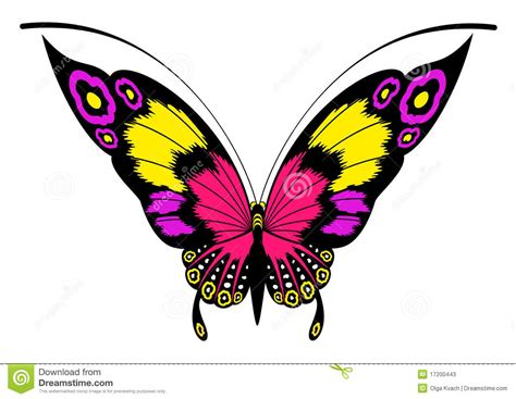 beautiful design beautiful butterfly for a design stock vector