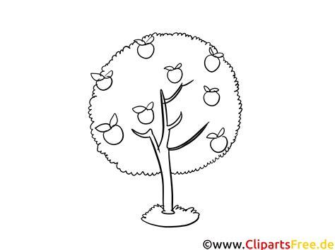 apfelbaum zum ausmalen malvorlagen fuer kinder