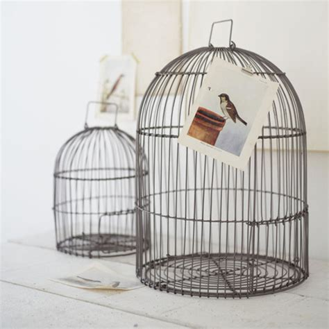 two bird cages contemporary home decor by cox cox