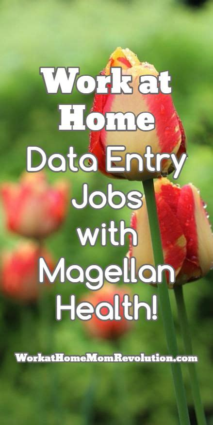 Magellan Health Mba Internship by 25 Best Ideas About Work For Hire On For