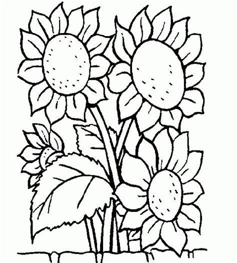 dibujos de esferas para colorear imagui 17 mejores ideas sobre dibujo de girasol en pinterest