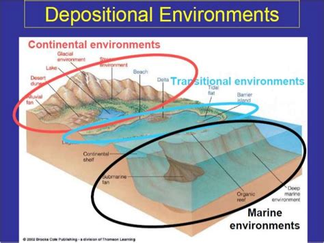 Continental Shelf Marine by Classification Of Marine Depositional Environment