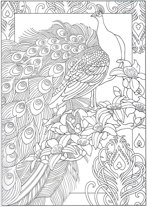 coloring pages printable peacocks stress relief coloring pages peacock coloring page 29 31 color pages stencils