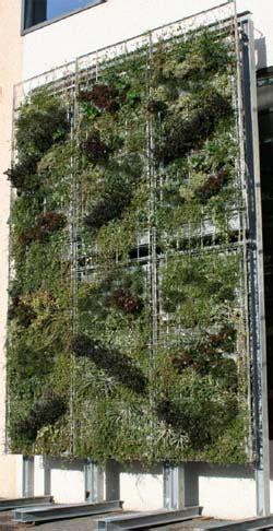 strutture per giardini verticali giardini verticali greentips consigli verdi