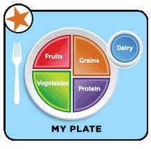 Do You Mix Your Food On Your Plate by Myplate Food Guide