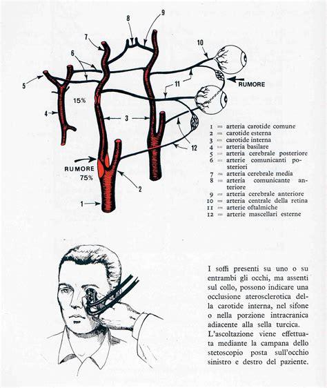 mal di testa e pressione 11 punti di pressione contro il mal di testa aiutarsi con