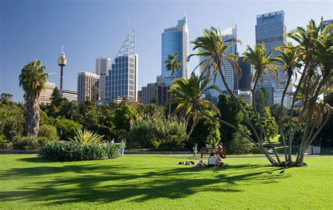Botanical Gardens In Sydney The Royal Botanic Gardens Tourism Resort Best Travel