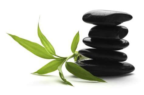 pictures of zen zen sayings bridle infocus