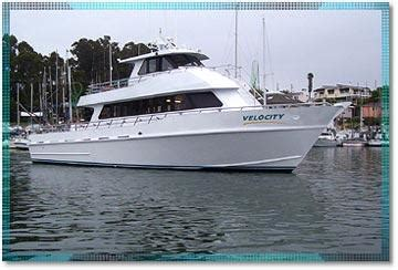 party boats for sale california stagnaro sport fishing charters and whale watching