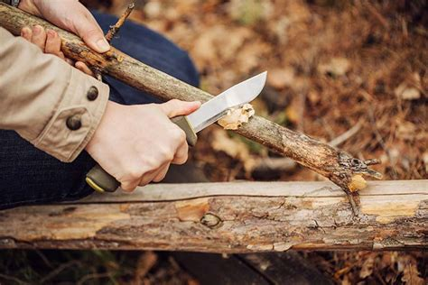 Obscure Bushcraft Skills You Should Survival