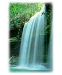 Detox Gastonia by Cleansing Gastonia Hc Wellness Colonic