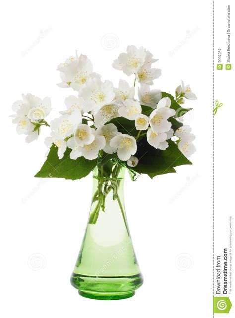 bouquet in the vase royalty free stock photography