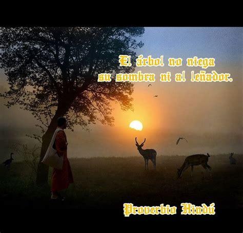 imagenes de judias del hervidas proverbio hindu proverbios del mundo pinterest hindus