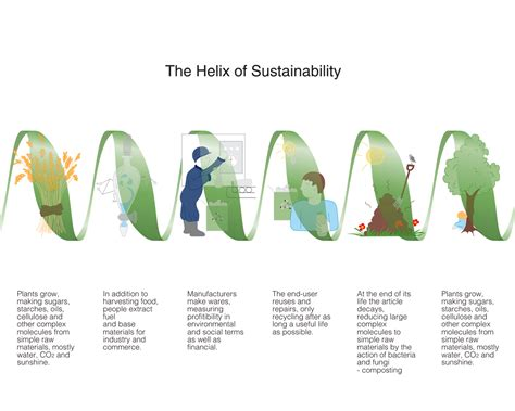 design for environmental practices helix sustainability