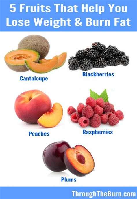 healthy fats help you lose weight 5 fruits to help burn lose weight