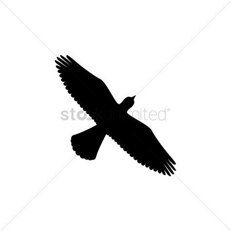 Birds Top top view of bird silhouette vector image 1440043