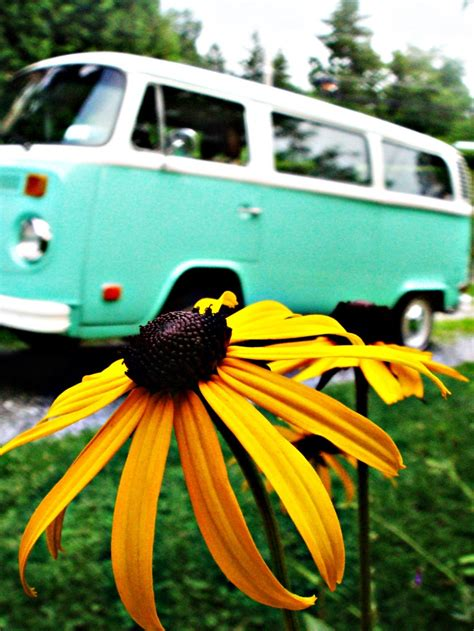 volkswagen van hippie blue 1021 best vintage vw buses exotic mobile homes images on