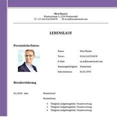 Word Vorlage Lebenslauf 2015 Muster Lebenslauf Word Muster Lebenslauf Jobscout24