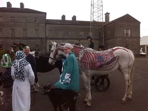 rescue equines steal the show at ballinamore hungry march 2014 hungry horse outside