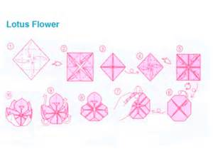 How To Make Origami Lotus Flower Origami Lotus Flower